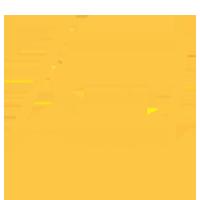 لوگوی زرین پال